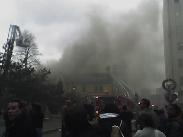 Sassafrass on Fire